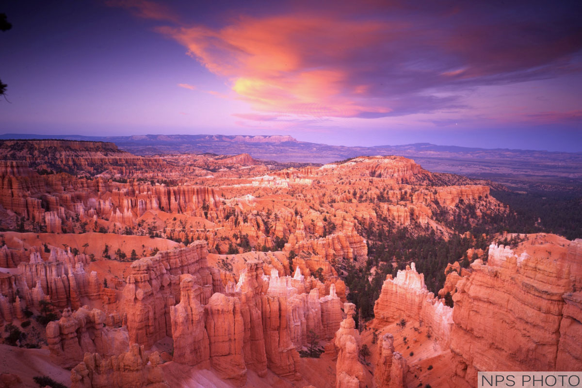bryce canyon national park women Bryce canyon national park gifts from spreadshirt unique designs easy 30 day return policy shop bryce canyon national park gifts now.